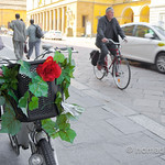 Cycling around Parma, Italy