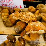 Porcini mushrooms at Campo de' Fiori market in Rome, Italy