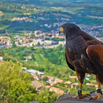 Looking over Narni in Italy