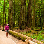 Walking around Cathedral Grove in Vancouver Island, BC (Canada)